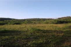 LOT FOR SALE IN TUBURAN, CEBU