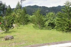 Prime Residential Lot For Sale at Riverdale Subdivision Talamban