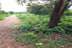 Lot for Sale in Coron, Palawan